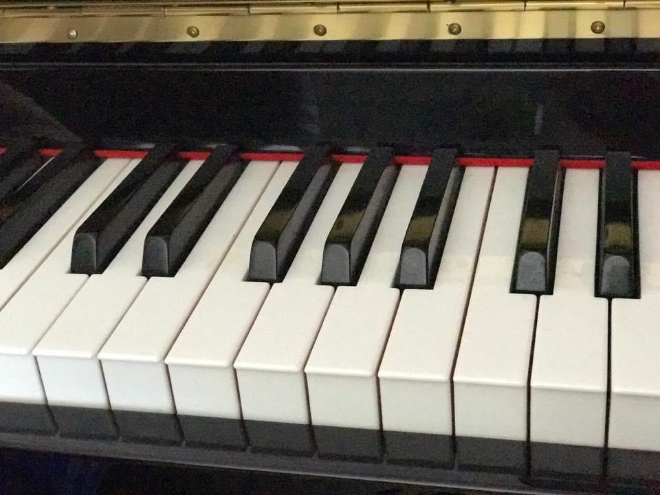 Ogłoszenie darmowe. Lokalizacja:  NJ. USŁUGI - Pedagogiczne. Lekcje gry na fortepianie w.